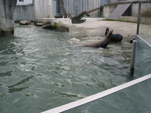 Zoologischer Garten Karlsruhe